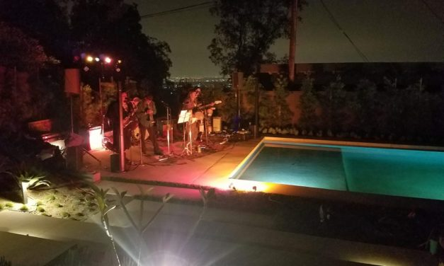 Post-Mortem: Modern Lap Pool Designed for Live Music & More