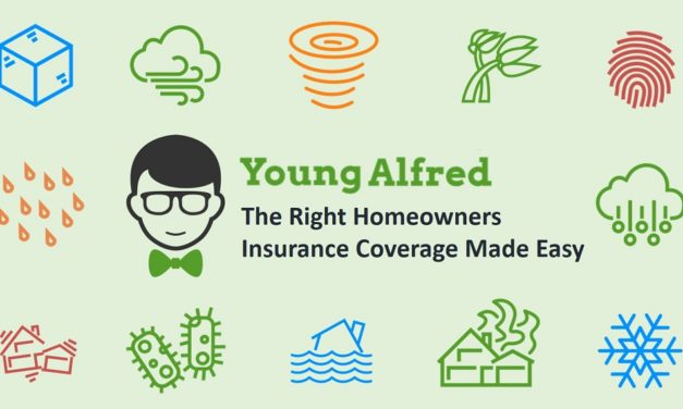 4 Reasons to Use Young Alfred to Purchase Homeowners Insurance
