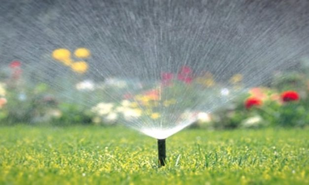 Improve Your Landscaping with a Smart Irrigation System