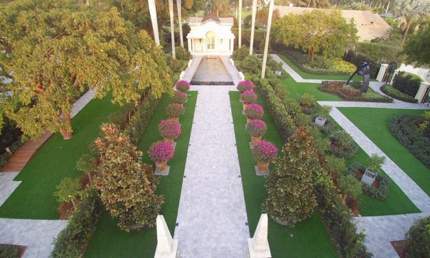 Tempted to Install Artificial Grass? Not So Fast!